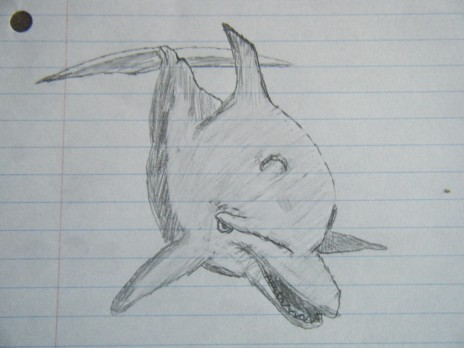 I drew a...