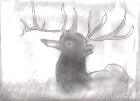 moose i made