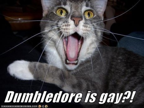 DUMBLEDORE IS GAY?!