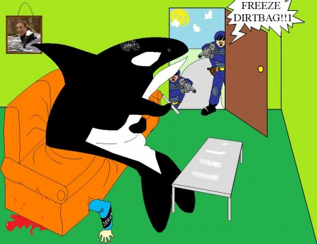 Killer Whales Attack!