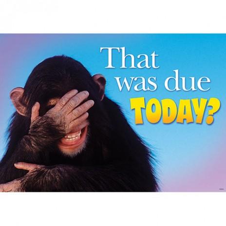 Fail Monkey