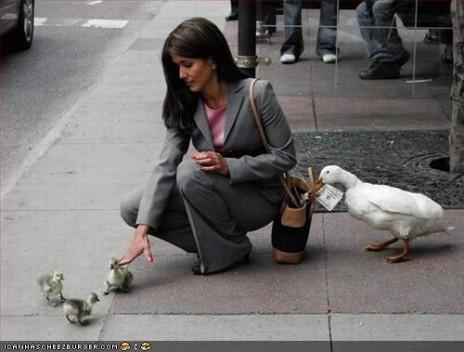 ducky all da way