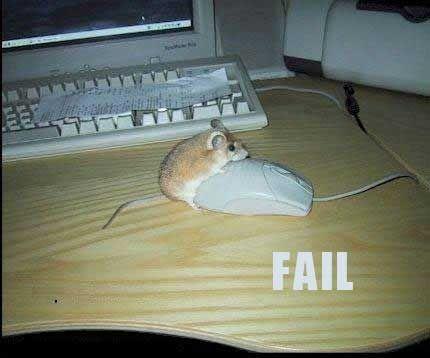 Brand new FAIL!