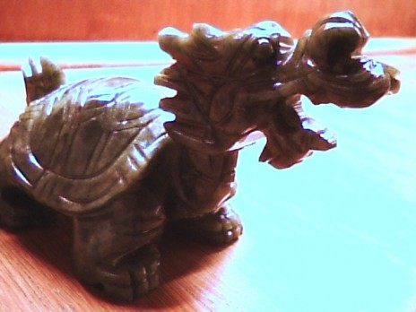 dragon dragon dragon! turtle turtle turtle!