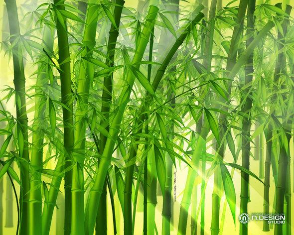 Bamboo Beating remake!