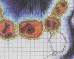 My sketchbook -new update- 23.01.2008 - Nr.1