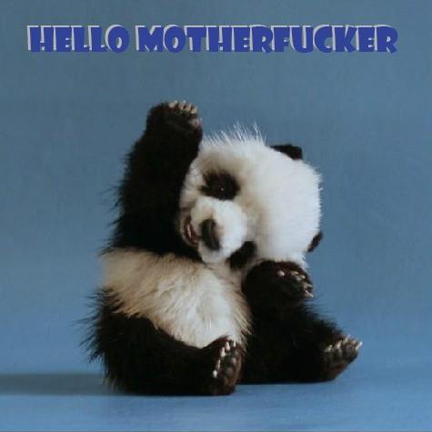 Hello ...