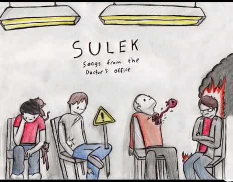 Sulek out on CD!