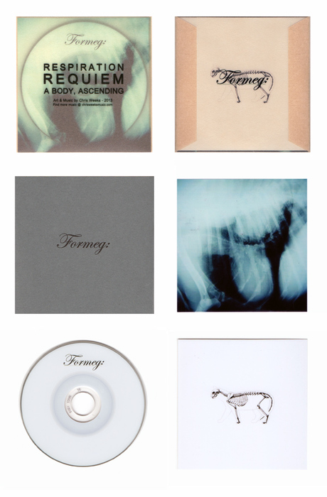 Limited Edition Mini CD - Formeg: [EP]