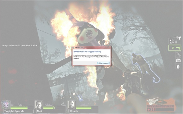 Witch Amy On Fire Caused L4d2 To Crash