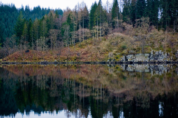 [PIC] Beautiful symmetry on a lake in Scotland