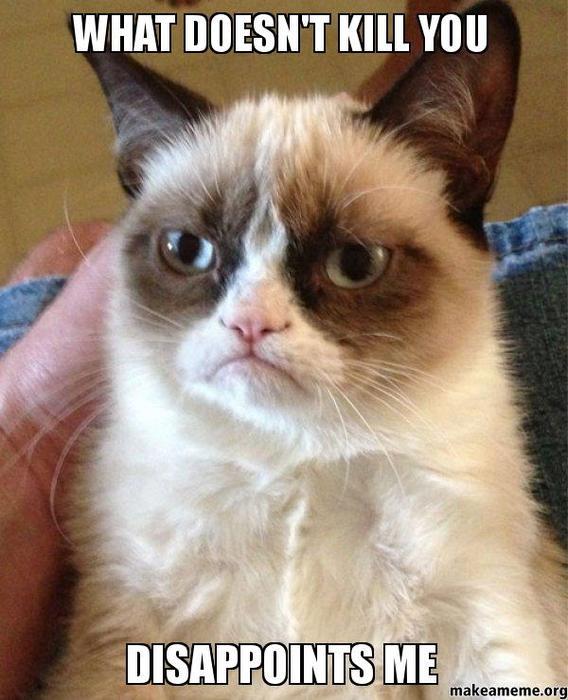 Who does Grumpy Cat sound like?