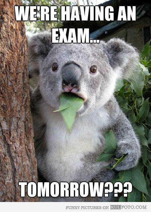 Last final exam tomorrow!