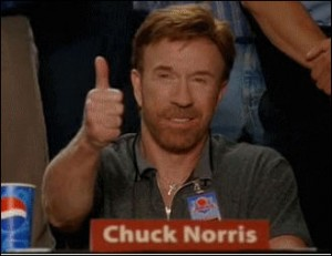 4830520_141439247191_Chuck_norris_approved.jpg