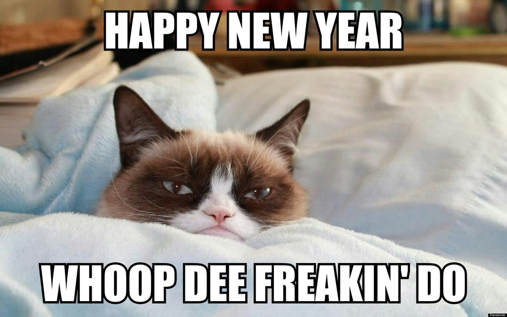 4118967_142017714612_the_grumpy_cat__happy_new_year_____d_by_cartoonrockfan.jpg