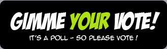 1266894_144351294241_vote.jpg