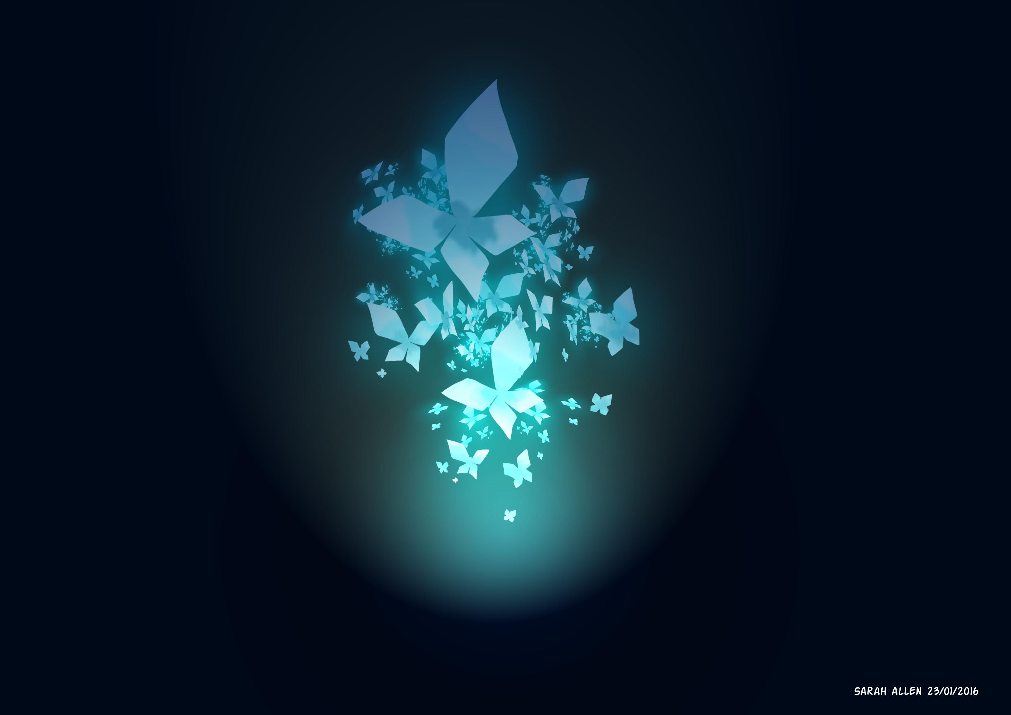 3634252_146176834852_butterflies2.jpg