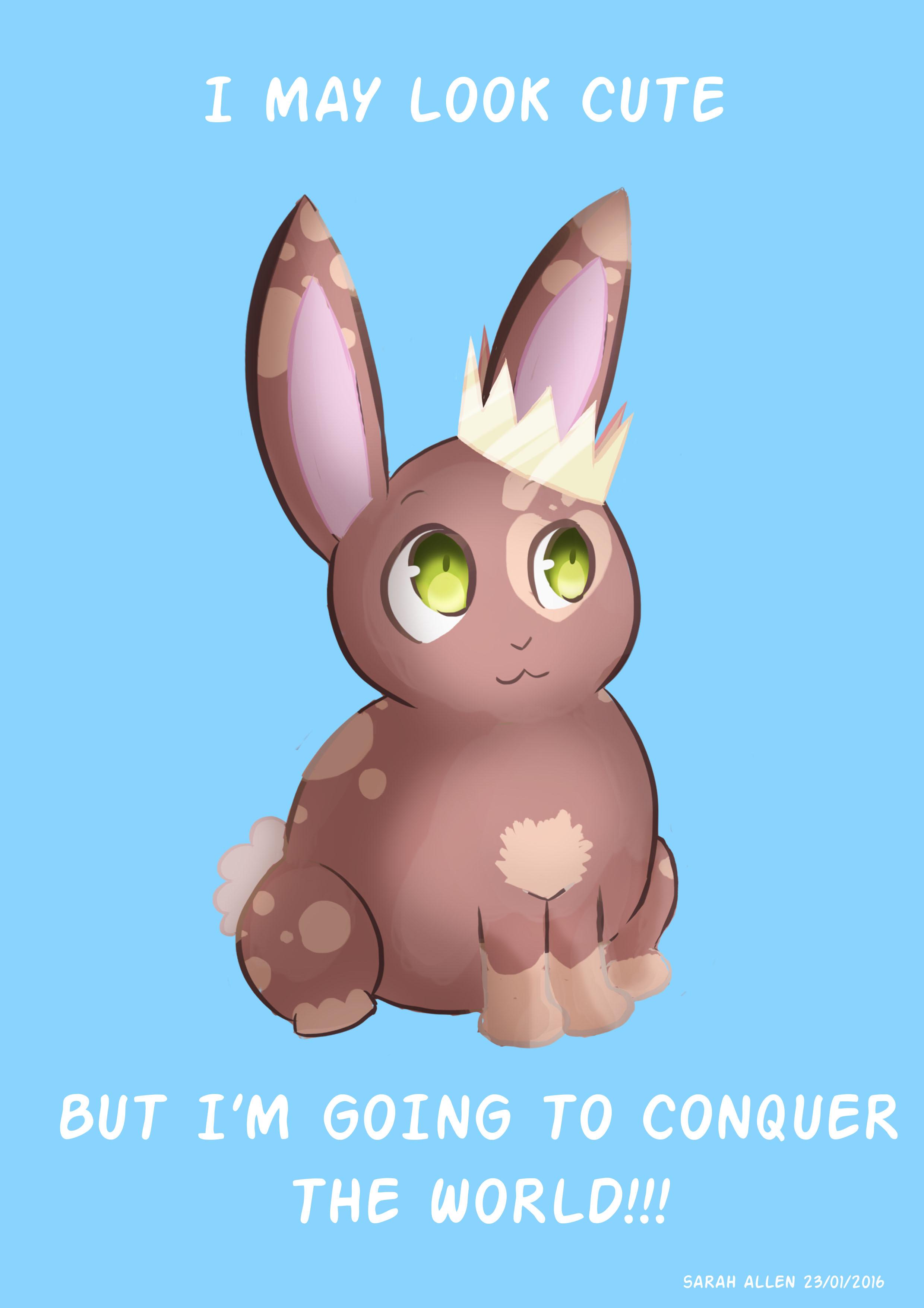 3634252_146176845023_bunny2.0.jpg