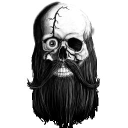 4554283_146823621293_Skull_crest_scar_eye.png