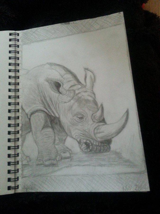 Rhino by April Phelps
