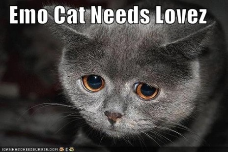 Emo kitteh needs teh loves too