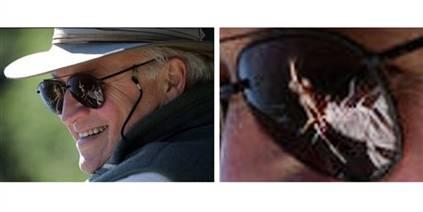 Dick Cheneys shades
