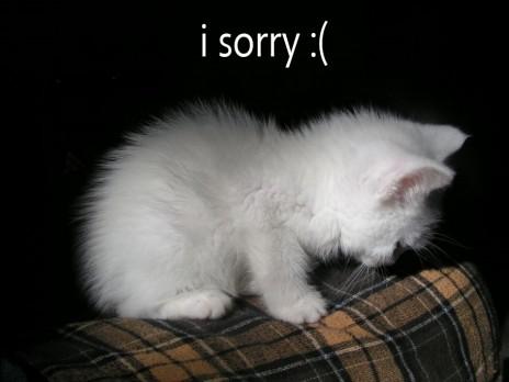 im sorry!!!!!!!!!!!!!!