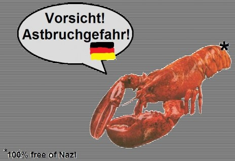 A talking Lobster! And he knows teh German!