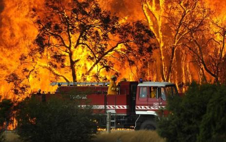 Victorian Bushfire Appeal