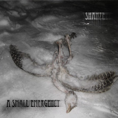 A SMALL EMERGENCY EP, OUT NOW