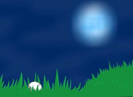 New Little Story of the Nightball