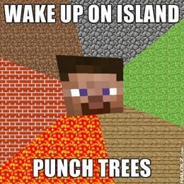 Too Much Minecraft