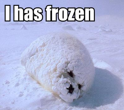 uuurgh. Winter...illness.....