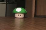 Who likes Mushrooms?