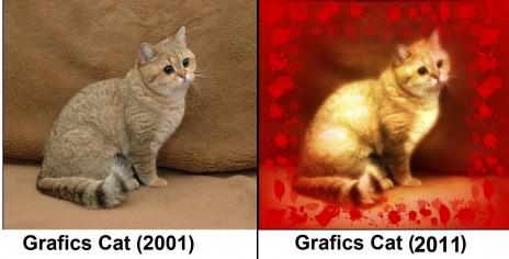 Graphics Design Project...