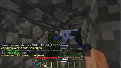 Minecraft: The Red Man