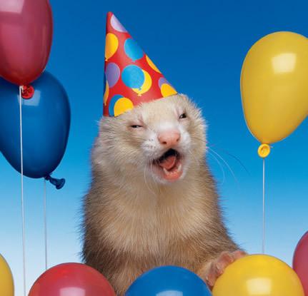 My birthday today.