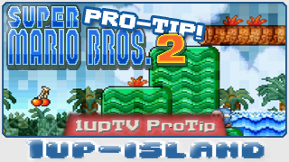 SMB2: Pro Tip!!! (for hardcore gamers)