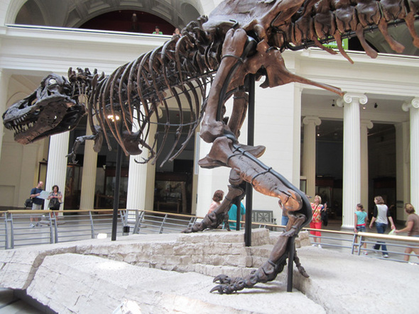 lickalotapuss dinosaur