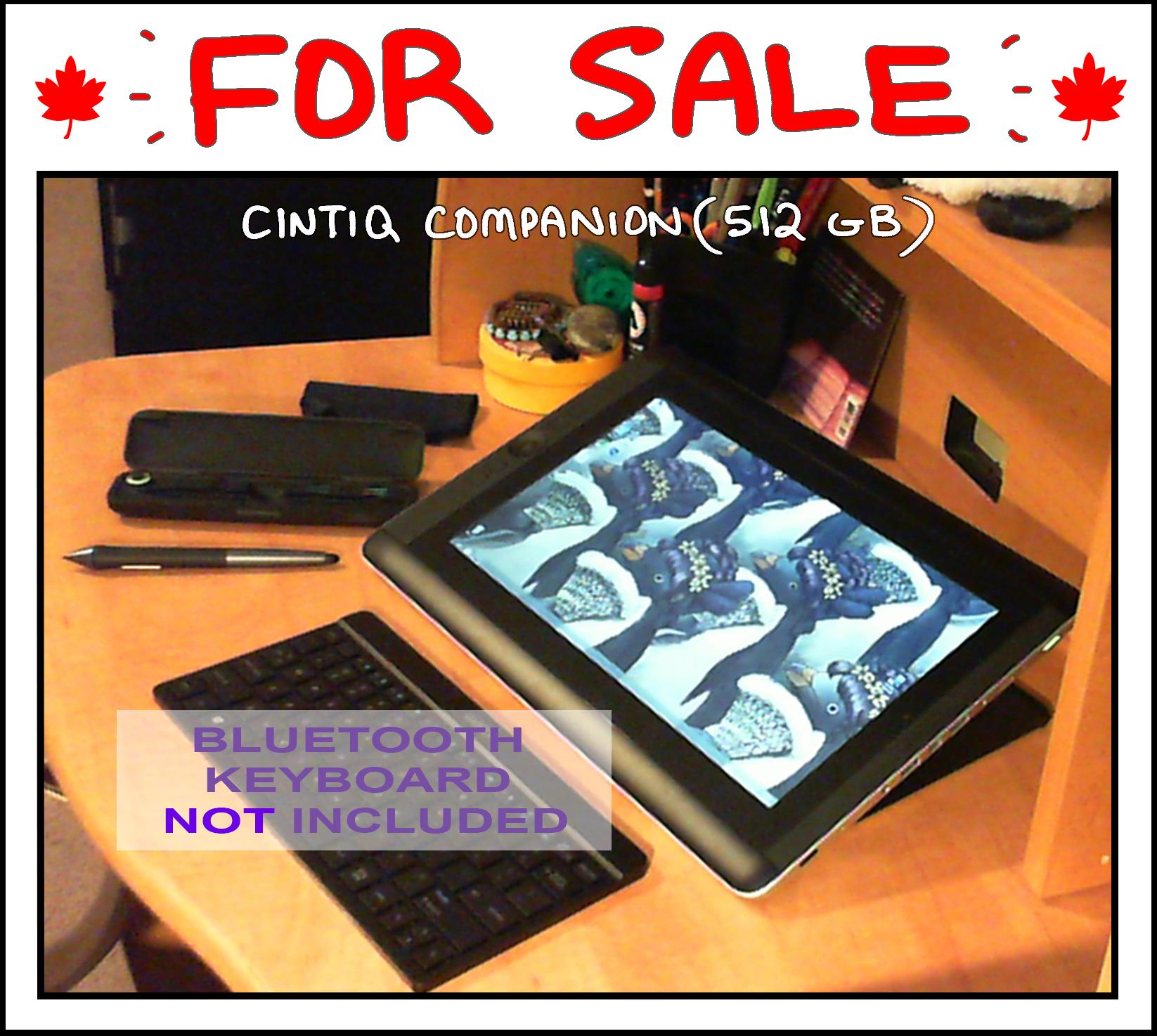 2916822_143570497613_CintiqCompanion-ContentsExamplePhotoderp.jpg