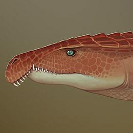 Archosaurus