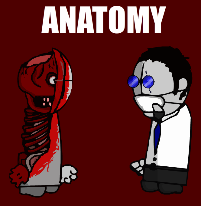 4944376_147177213391_TheAnatomy.png