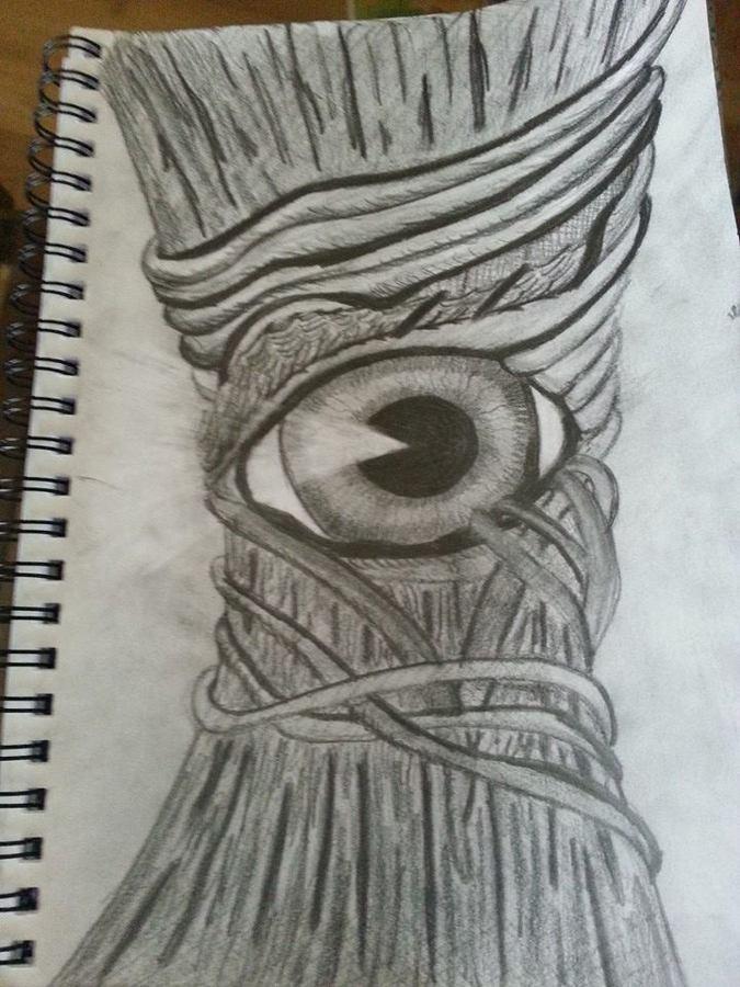 Eye Hollow by April Phelps