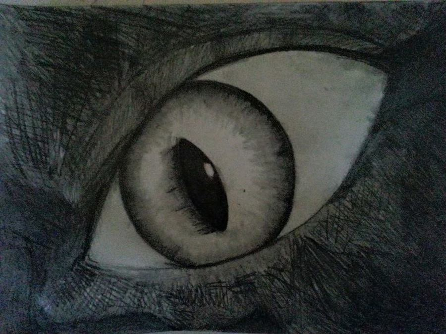 Wolf Eye by April Phelps