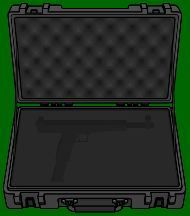 4225158_150671768362_Weaponcase.png